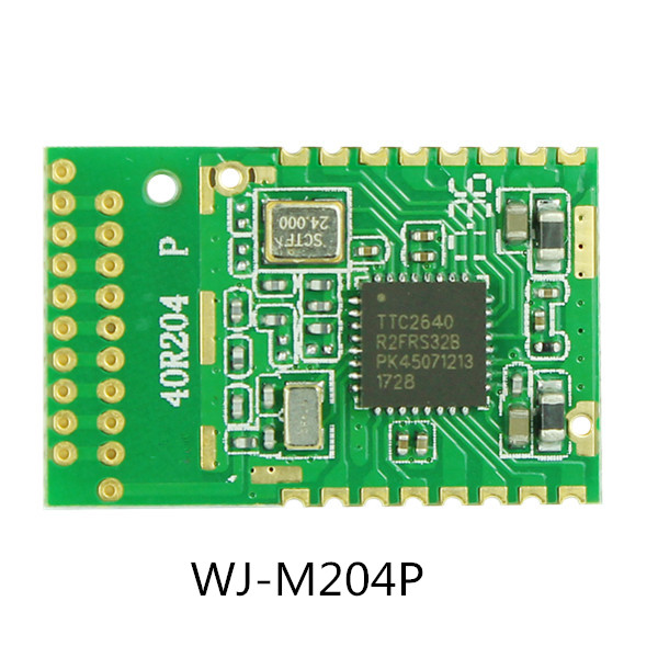 ble module 204